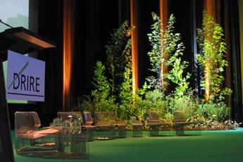 décoration végétale, décor végétal, scène, plantes, scénographie, scénomob